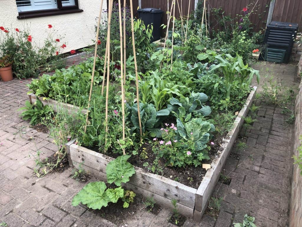 Raised bed in the paving