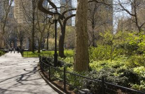 Besøg Central Park på din billige rejse til New York