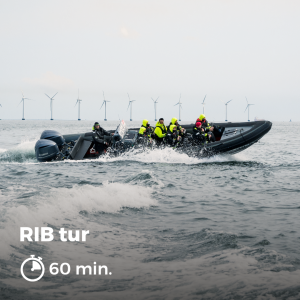 RIBbåd på Øresund