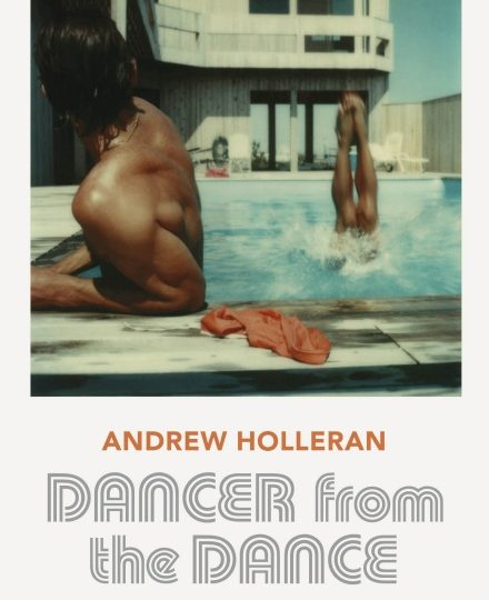 Bookcover Dancer from the Dance