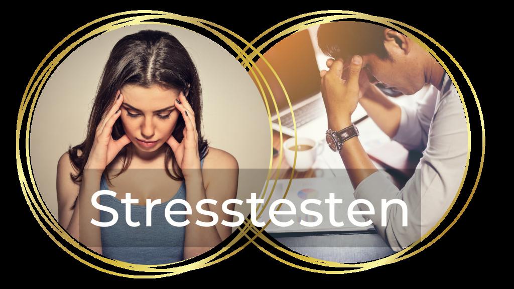 Stresstesten - Livskunst
