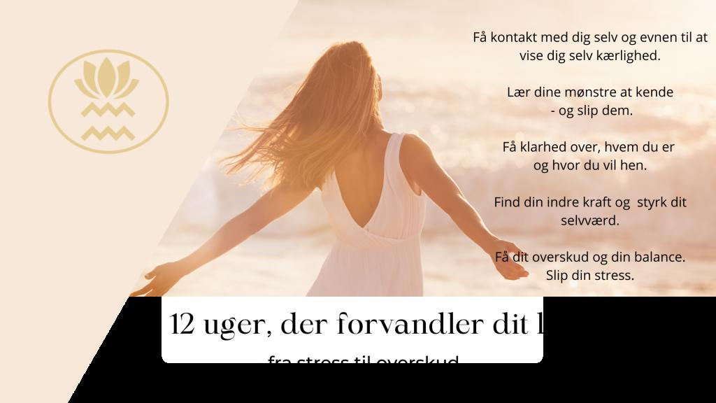 12 uger der forvandler dit liv fra stress til overskud - Livskunst - Annabianca Cecillia Milter