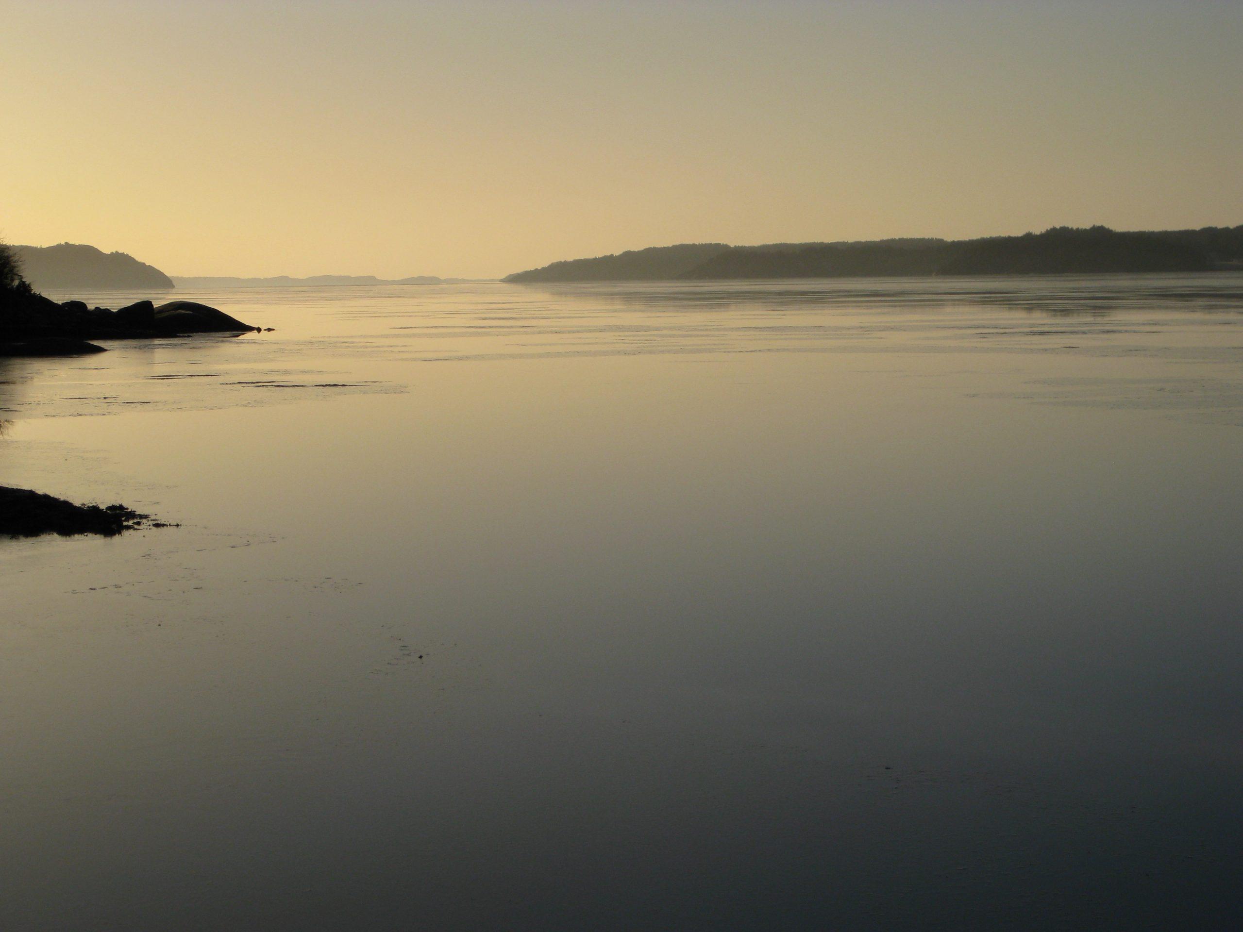 Vinter Gullmarsfjorden