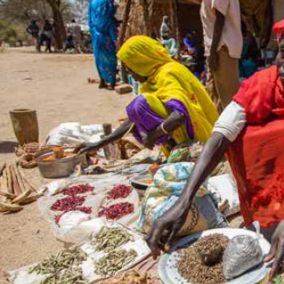 Women-led self-protection in Sudan Image