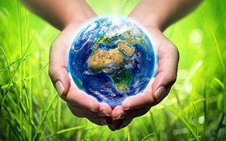 Miljökonsult