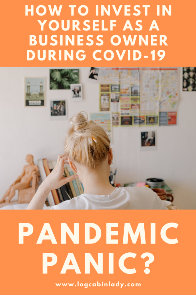Log Cabin Lady - Invest in yourself as a business owner - Pandemic-Panic-2