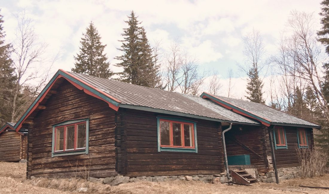 Log Cabin Lady - We Bought a Log Cabin