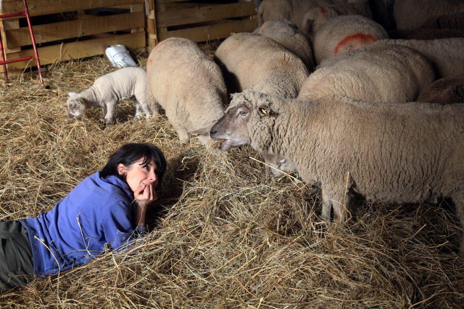 Stéphanie Maubé : une parisienne devenue bergère