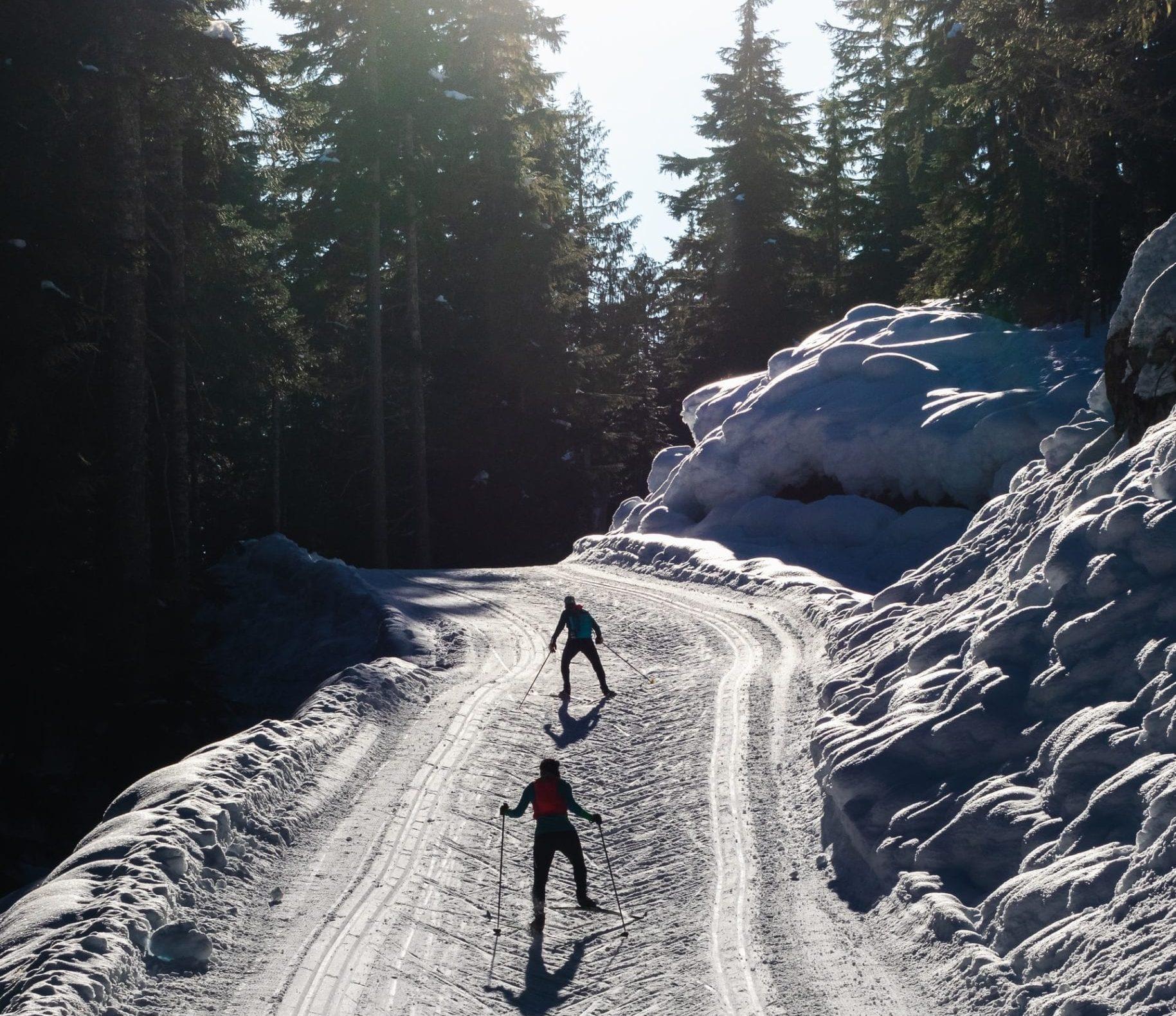 Hodelykt til skitur