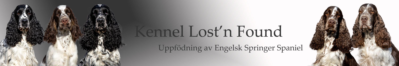 Kennel Lost'n Found