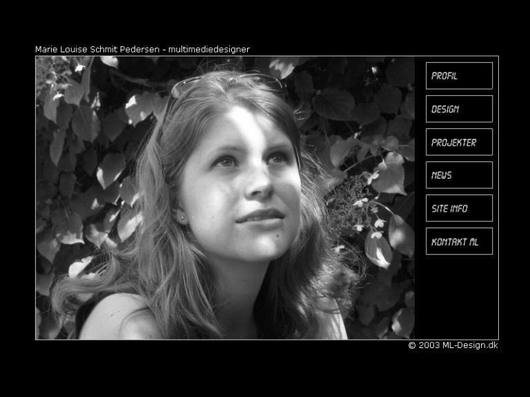 portfolio websdesign