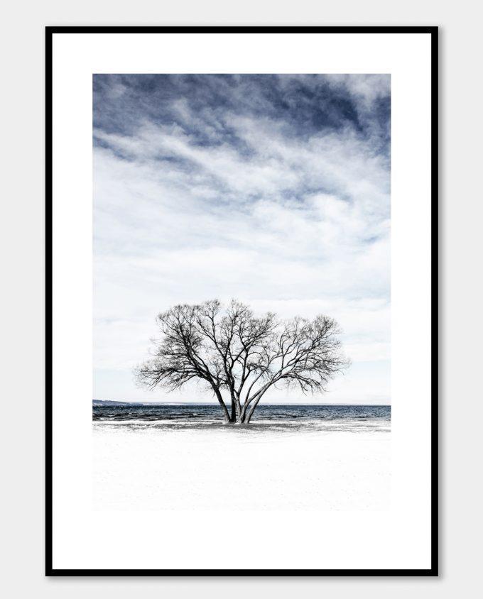 Huskvarna Broccoli Tree