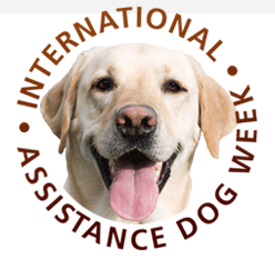 International Assistance Dog Week 2017 – Lucy & Molly