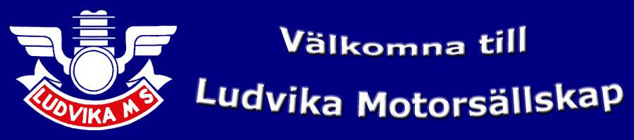 Ludvika MS