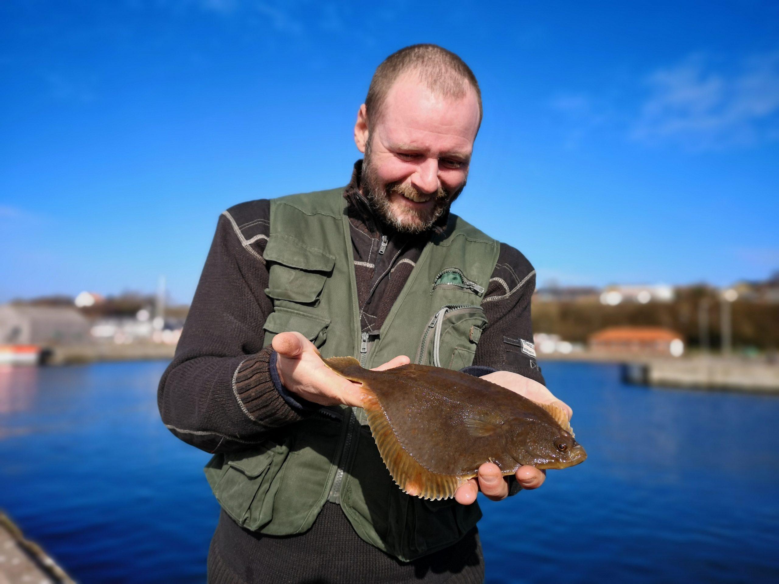Hasle Havn fladfisk.