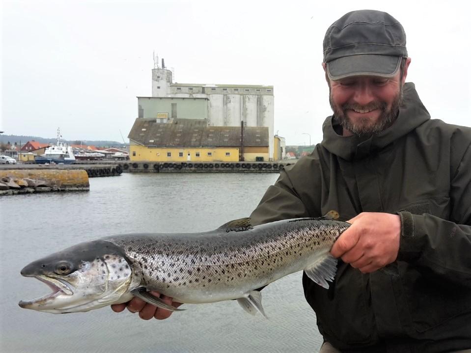 Lystfiskeri i Havne - Nexø Havn