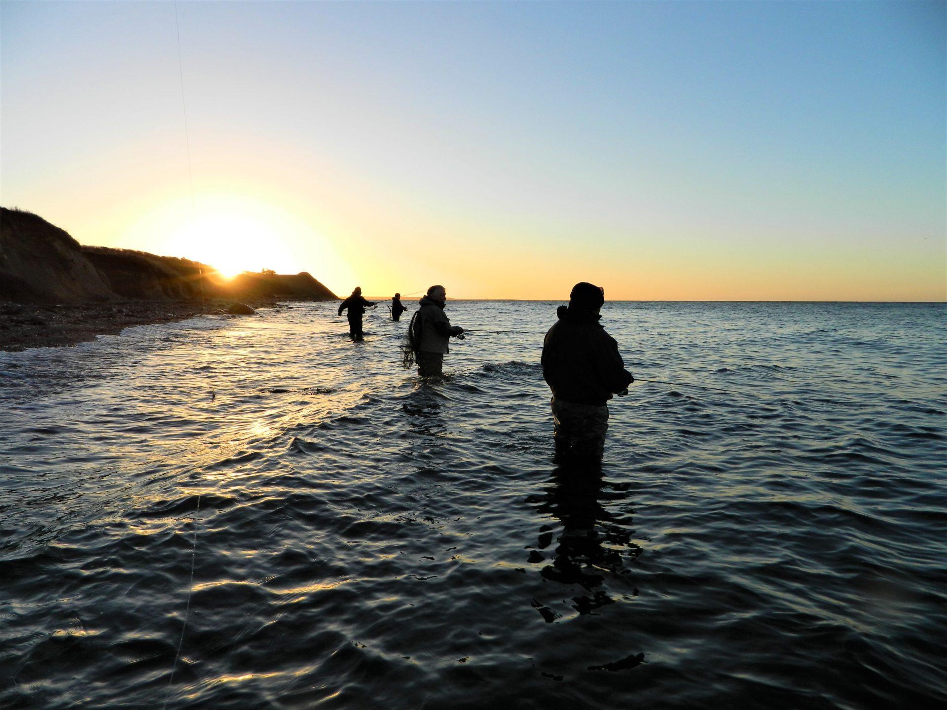 Sportsfiskere og lystfiskere