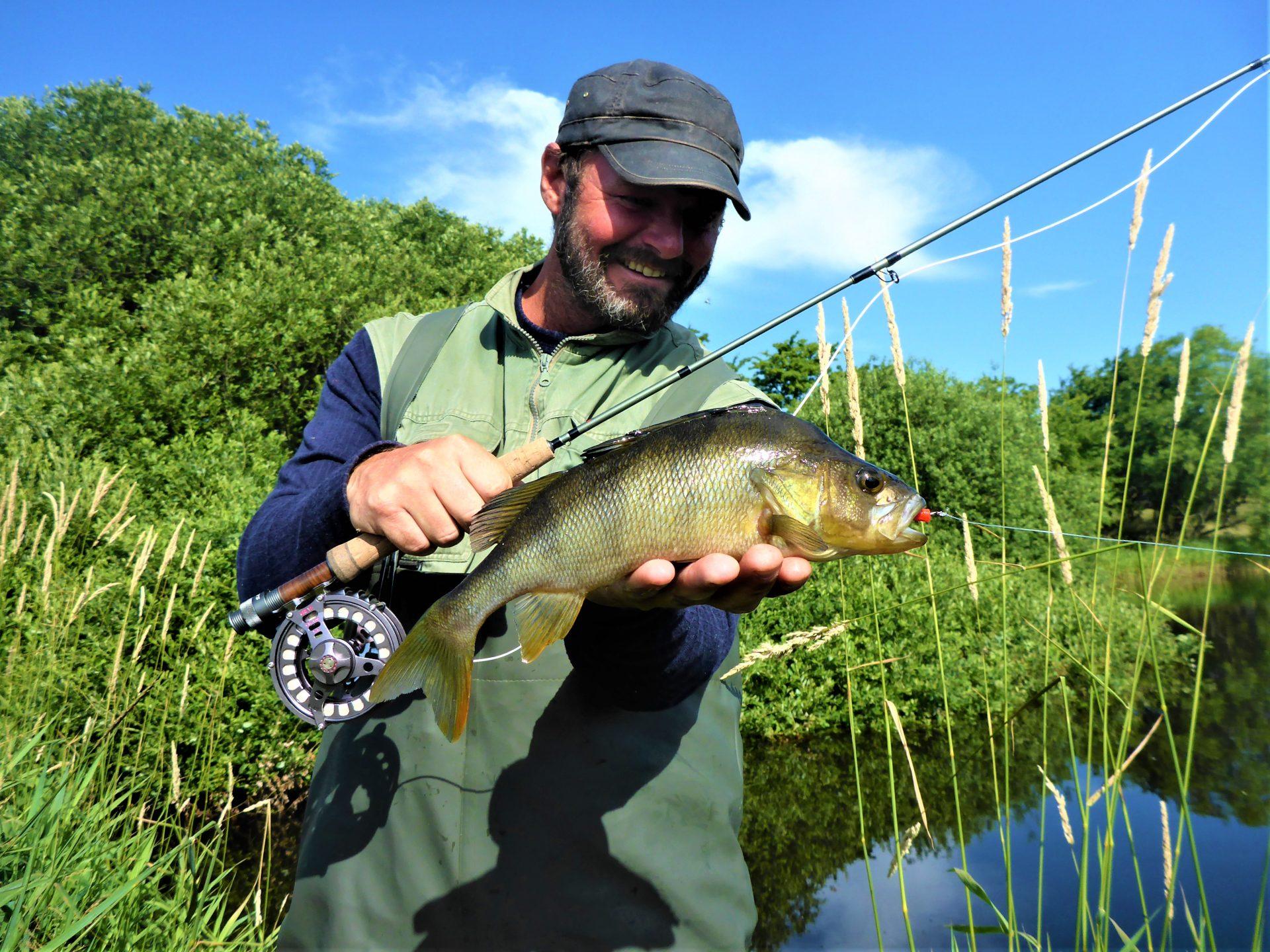 Fluefiskeri efter aborrer i lavvandede søer.