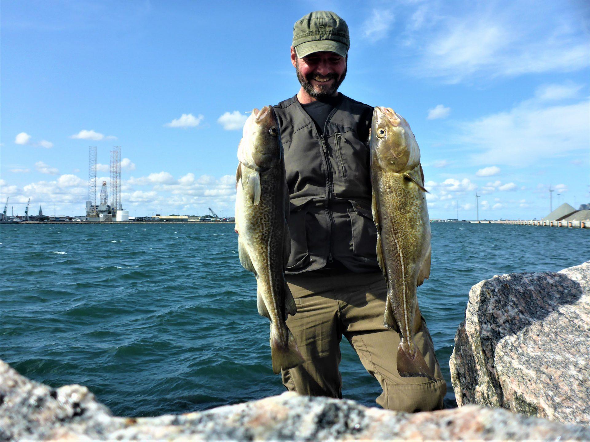 Oplev det spændende torskefiskeri i Frederikshavn.