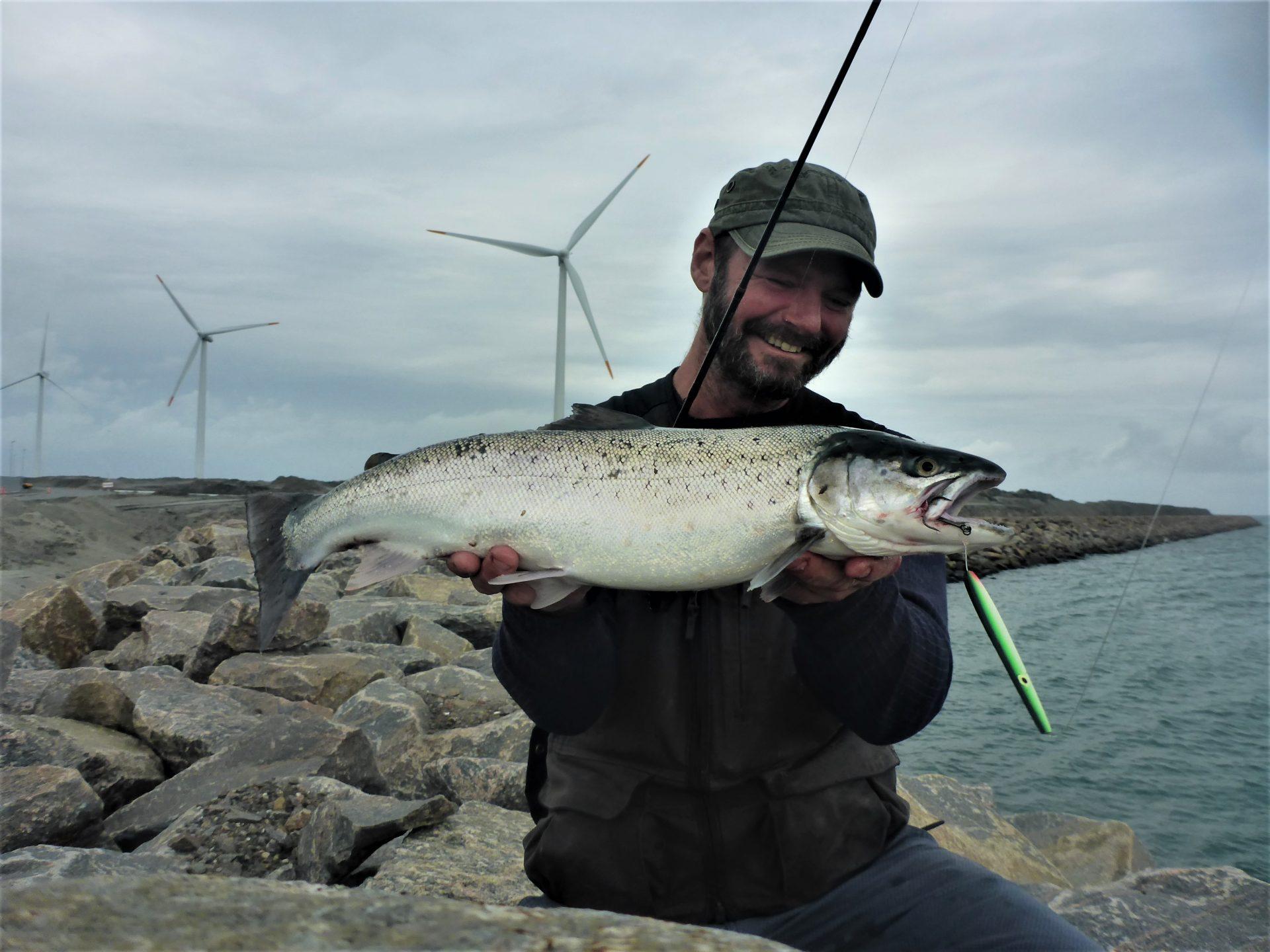 Havne i Danmark til fangst af havørreder.