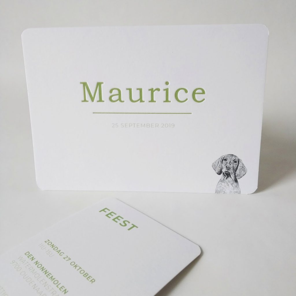 Geboortekaartje Maurice