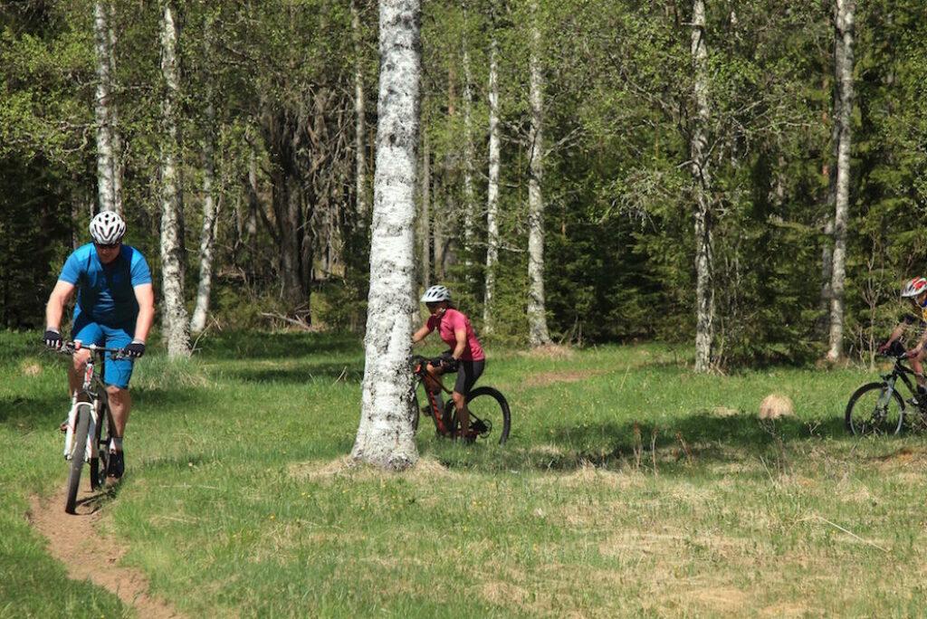 Cykla i Sälen, 3 cross country leder i Sälen