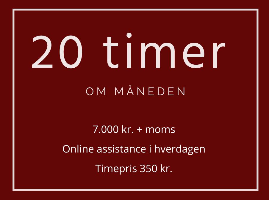 20-timer-per-mdr-online-assistance-i-hverdagen