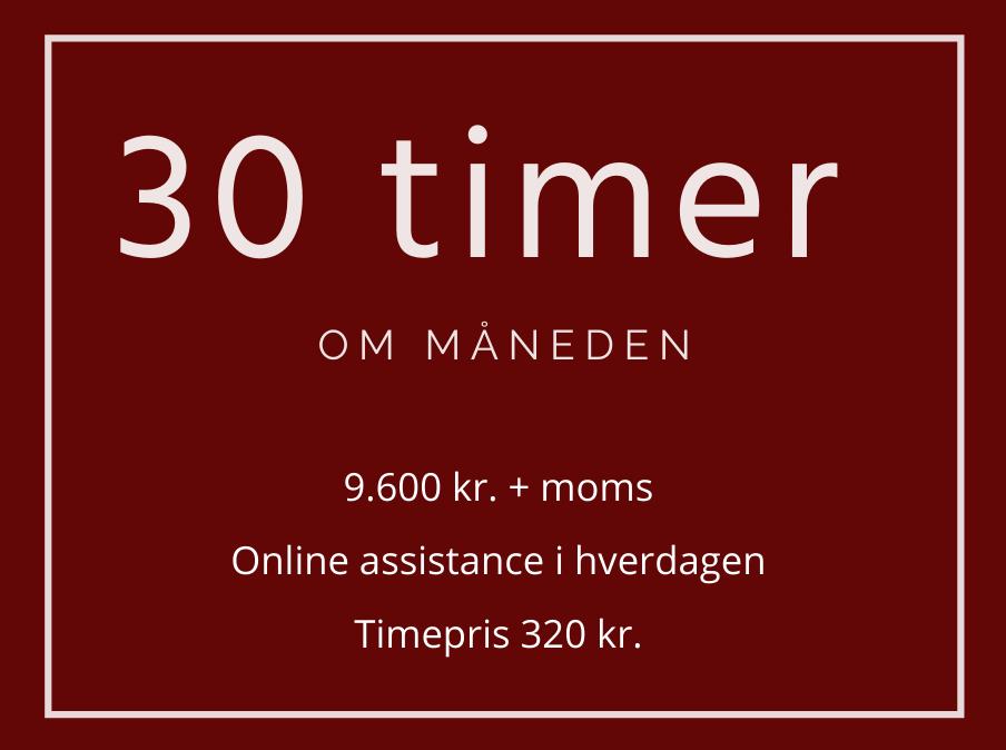 30-timer-per-mdr-online-assistance-i-hverdagen