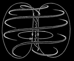 toroidal vortex