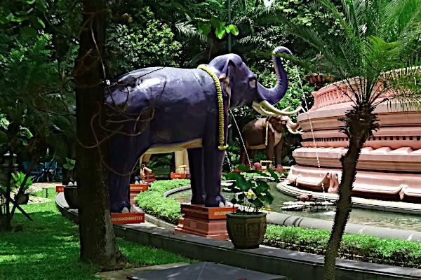Gå under en elefant - Thailand