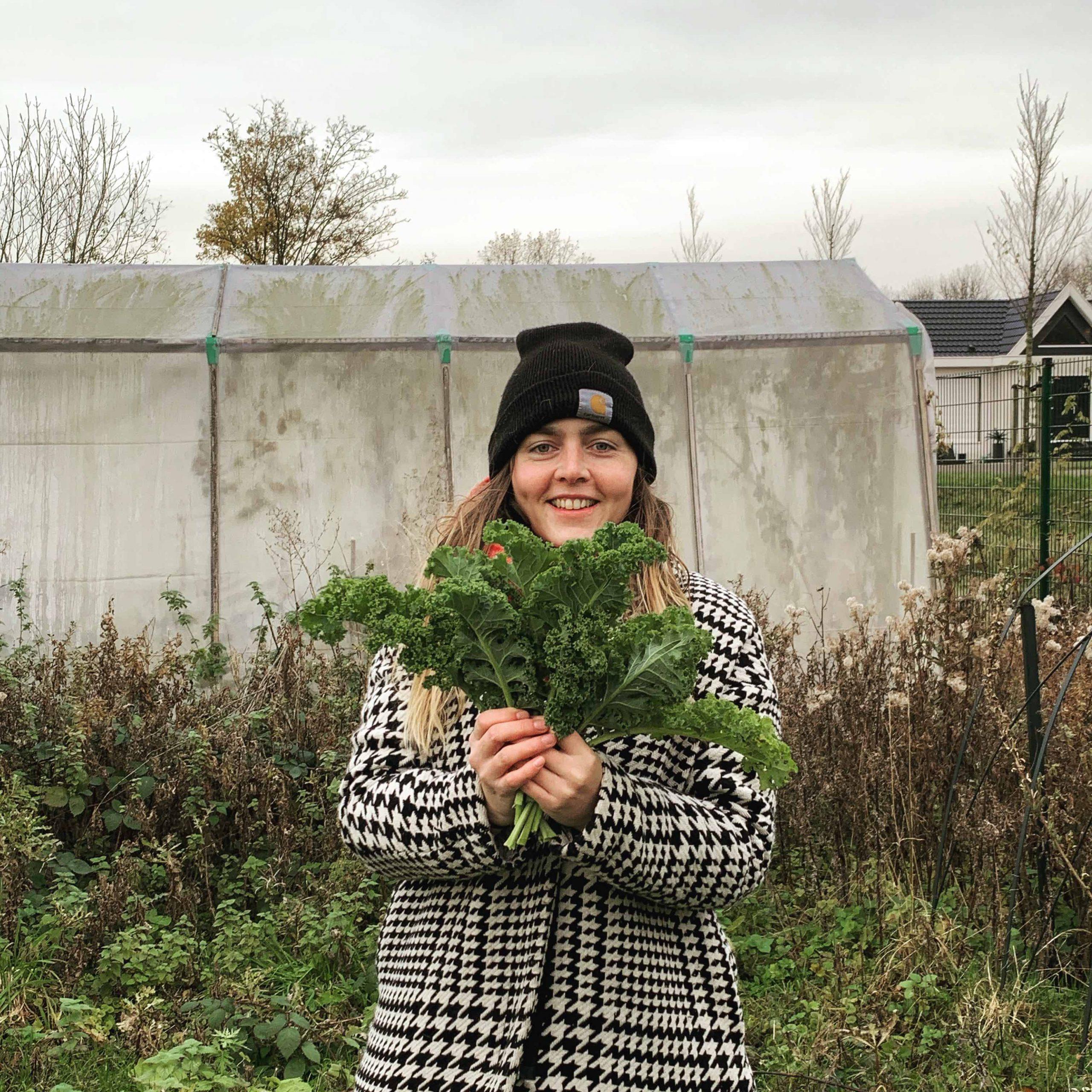 seizoensgroenten boerenkool maison viridi