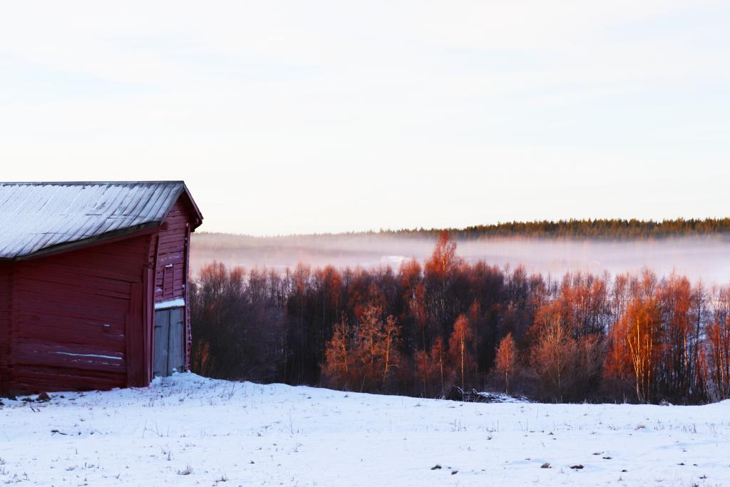 Vinterbild med snö på backen och med dimma i bakgrunden. En röd åttkantsloge är synlig.