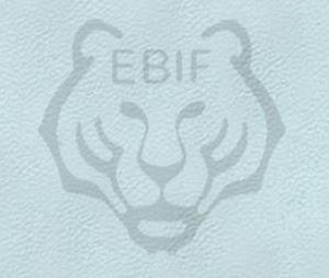 EBIF 1st Online Qualifier