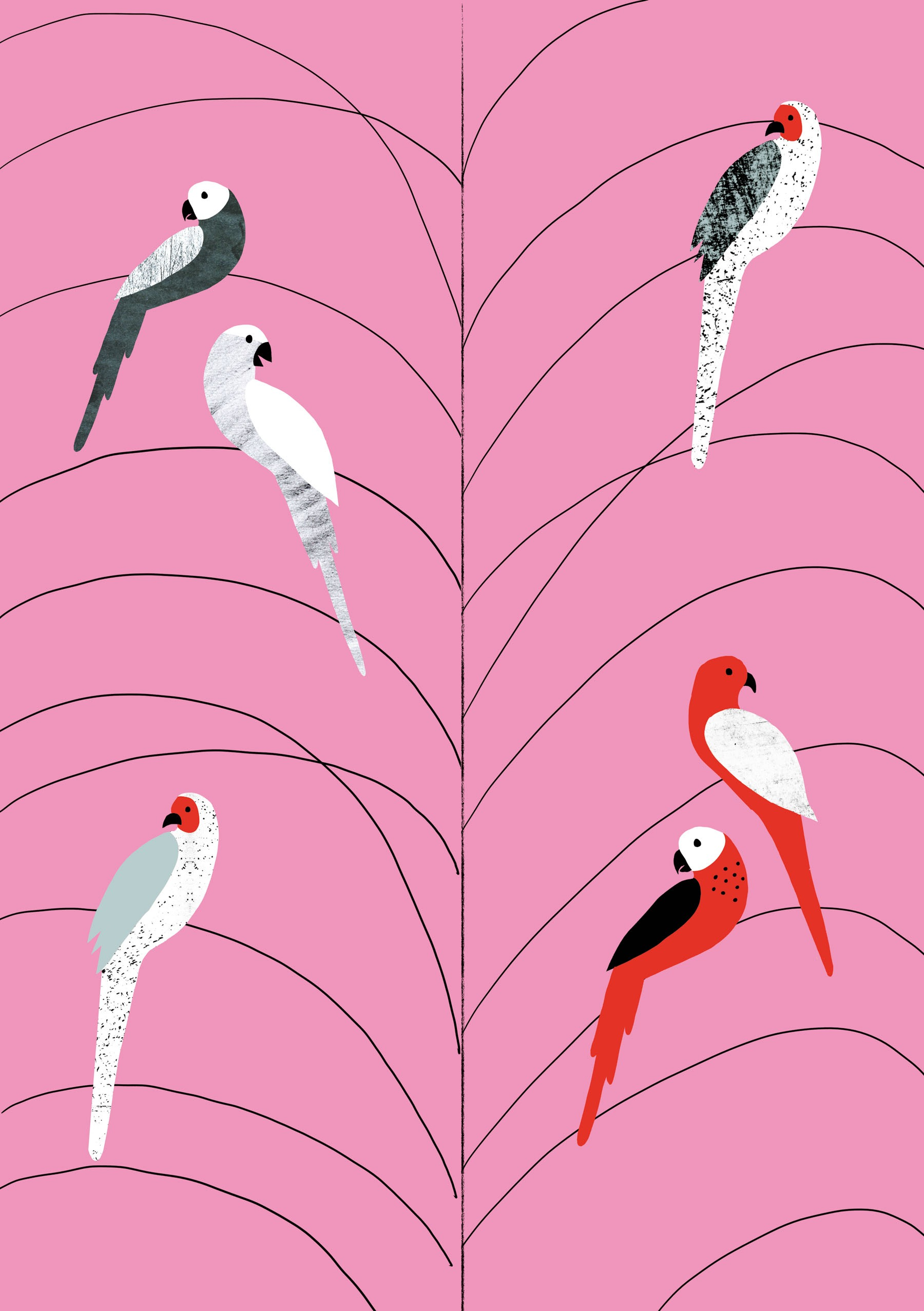 TROPICANA BIRDS ON BRANCH - Personal Work