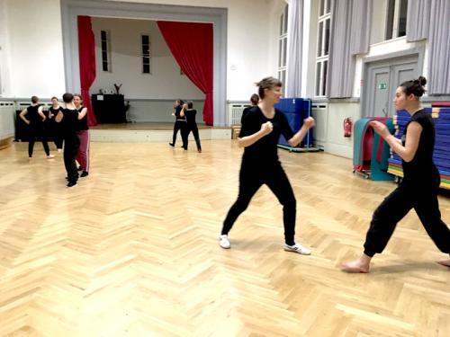 Kung-Fu Training_2018_03