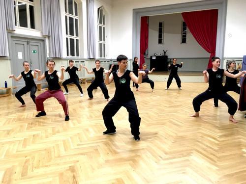 Kung-Fu Training_2018_06