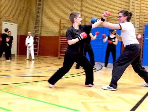 Lehrgang mit Birgit Toennies_11