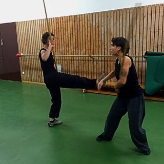 kung fu training 04