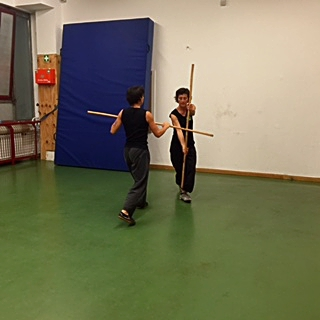 kung fu training 12