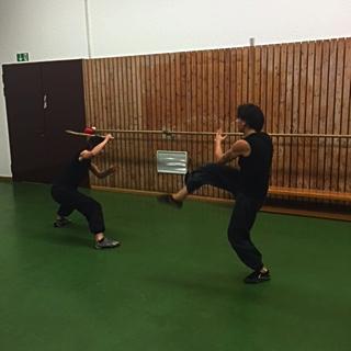 kung fu training 16