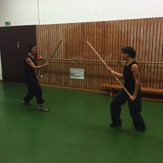 kung fu training 17