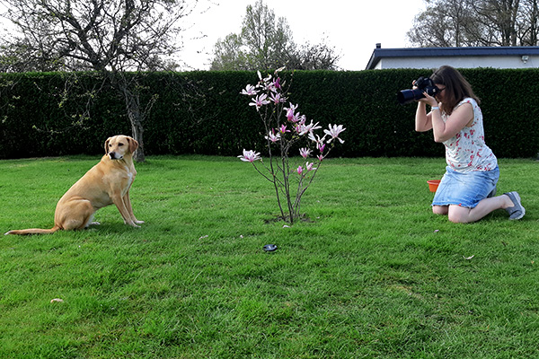 Location Hundeshooting Magnolie Making Off