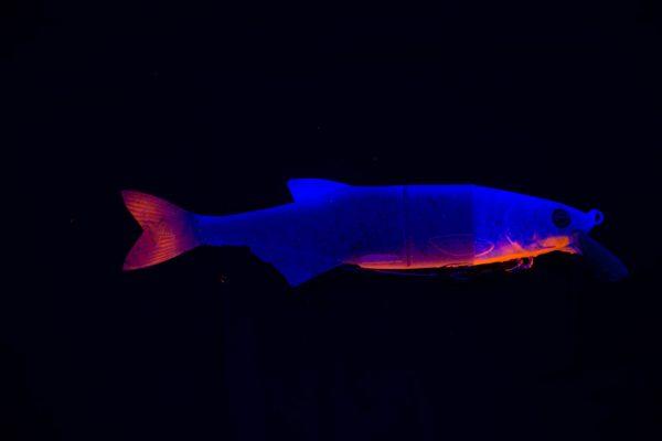 Hybrid Swimbait - Ghost Blue