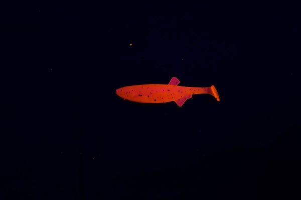 Player Shad 9cm - Orange Glitter