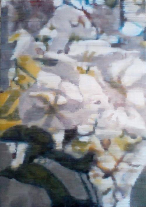 Blossoms Oil on canvas (60 x 80cm)