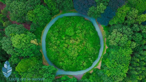 Afronden: bomen met rivier in het rond eromheen