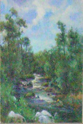 Zweedse rivier