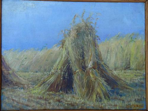Hooimijt in het veld