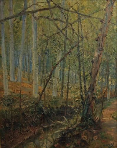 bosbeek 1914 Brabant