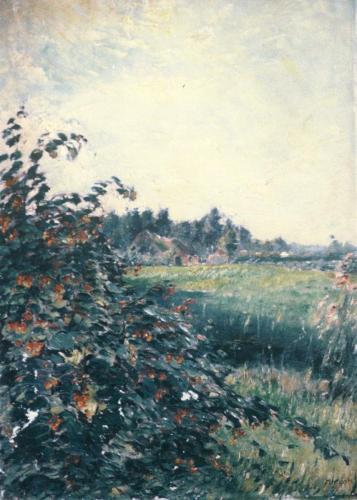 boerderij met weide Brabant